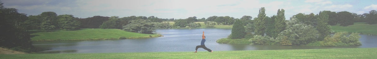 Charles MacInerney - Yoga Teacher Blenheim